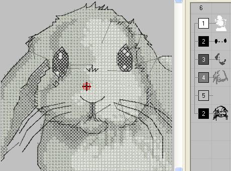 rabbit_cross001.png