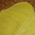 Желтый жакет.4