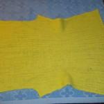 Желтый жакет.22