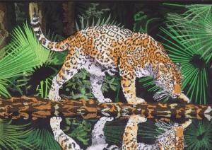 «Тропа» Царь амазонской сельвы – ягуар