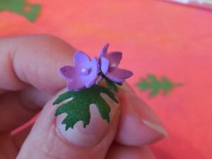 Cvety_iz_foramiana_13