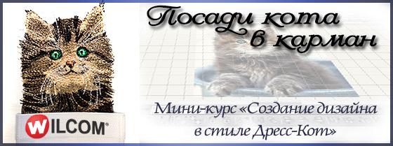 Мини-курс Кот в кармане