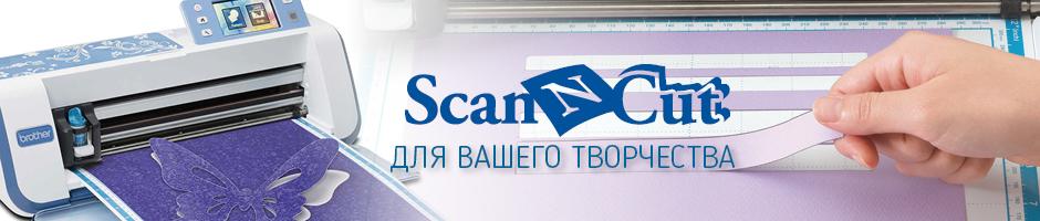 ScaNNCut2