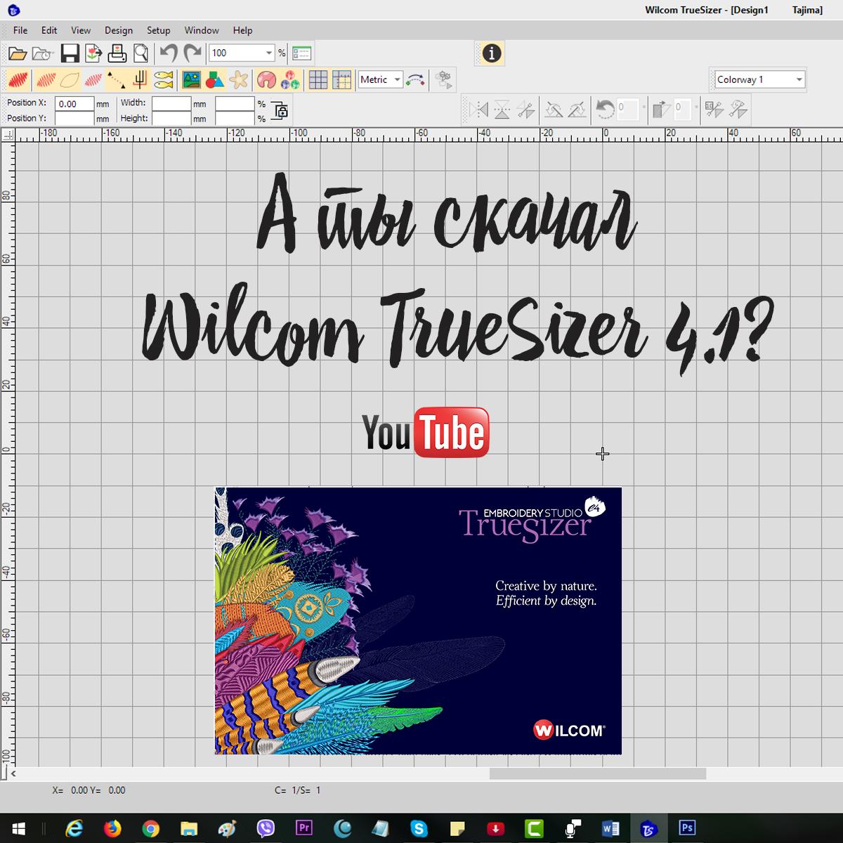 Конвертер Wilcom TrueSizer 4
