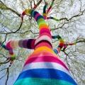 knitting-day_20